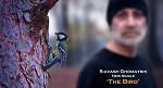 ورژن جدید پرنده